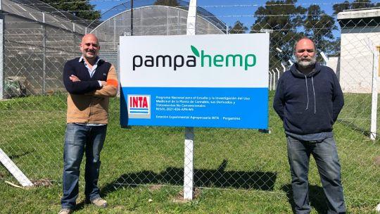 pampa-hemp,-la-empresa-privada-que-busca-abrirse-camino-en-la-industria-del-cannabis-medicinal
